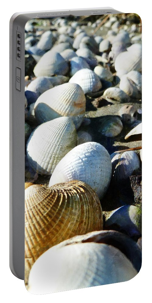 Muscle Beach Portable Battery Charger featuring the photograph Muscle Beach by Steve Taylor
