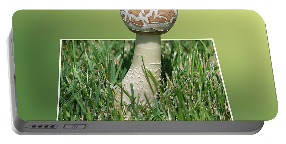 Out Of Bounds Portable Battery Charger featuring the photograph Mushroom 02 by Thomas Woolworth