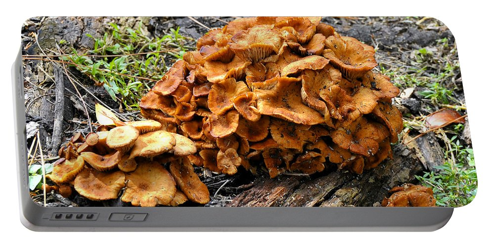 Fine Art Photography Portable Battery Charger featuring the photograph Mushroom Flower by David Lee Thompson