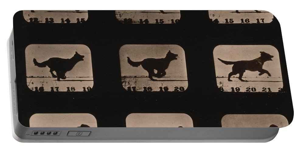Technology Portable Battery Charger featuring the photograph Muybridge Locomotion, Dog Running, 1881 by Photo Researchers