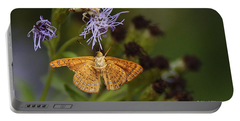 Roena King Portable Battery Charger featuring the photograph My National Geographic Moment by Roena King