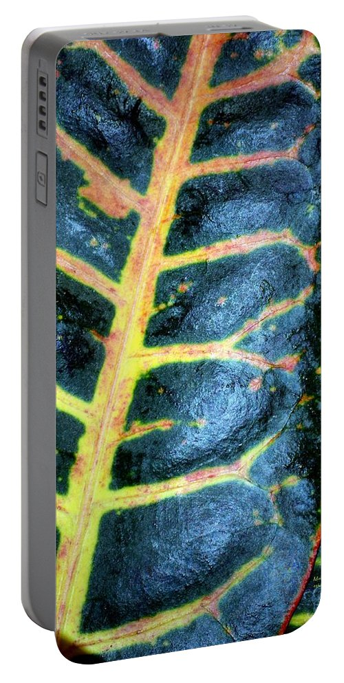 Natural Portable Battery Charger featuring the photograph Natural Abstract 6 by Maria Urso
