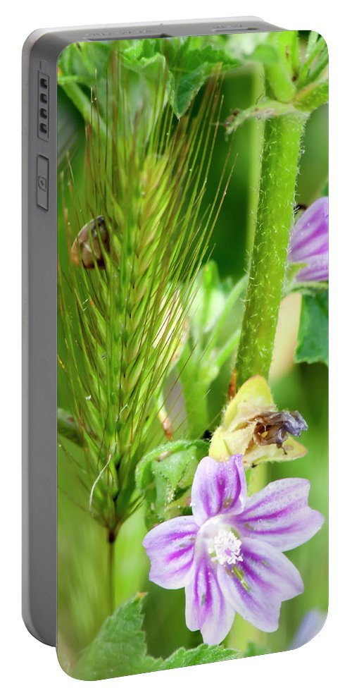 Flower Portable Battery Charger featuring the photograph Natural Bouquet by Pedro Cardona Llambias