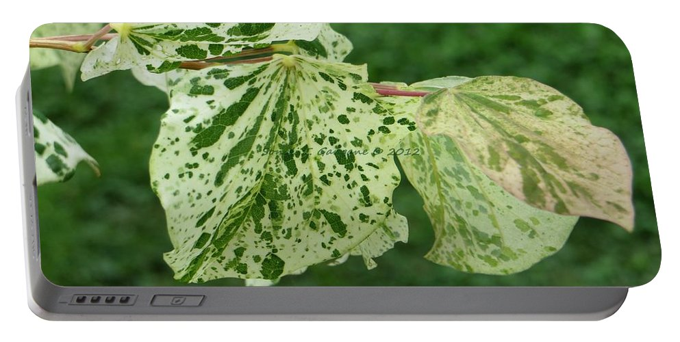 Spoted Leaves Portable Battery Charger featuring the photograph Nature Abstract by Sonali Gangane