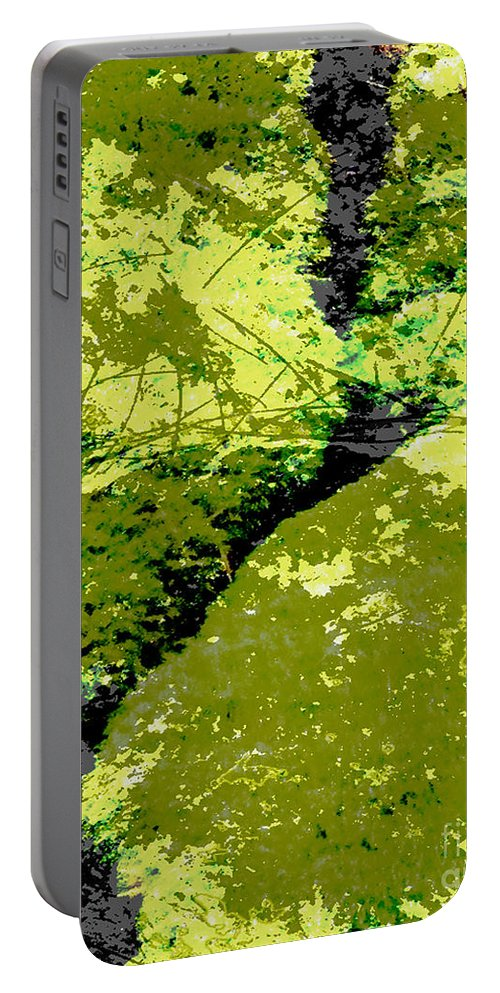 Moss Portable Battery Charger featuring the digital art Nature Study by Lizi Beard-Ward