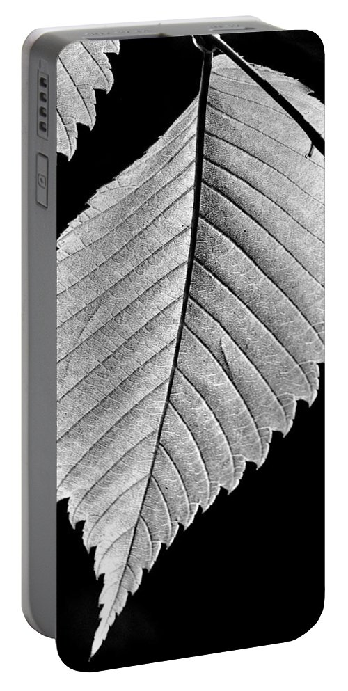 B&w Leaf Portable Battery Charger featuring the photograph Natures Wonders by Burney Lieberman