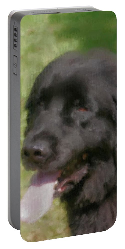 Animals Portable Battery Charger featuring the painting Newfoundland by Smilin Eyes Treasures