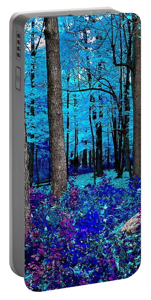 Portable Battery Charger featuring the photograph Night Vision by Burney Lieberman