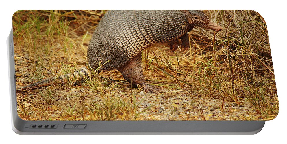 Roena King Portable Battery Charger featuring the photograph Nine-banded Armadillo Raised by Roena King