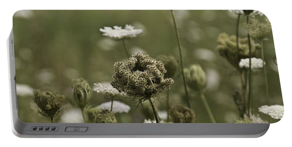 Flower Portable Battery Charger featuring the photograph Not Just A Weed by Trish Tritz