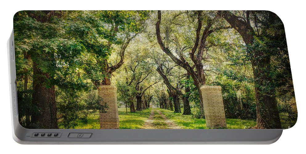 Tree Portable Battery Charger featuring the photograph Oak Tree Lined Drive by Joan McCool
