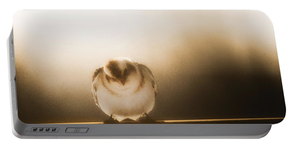 Birds Portable Battery Charger featuring the photograph On Winters Edge by Susan Capuano