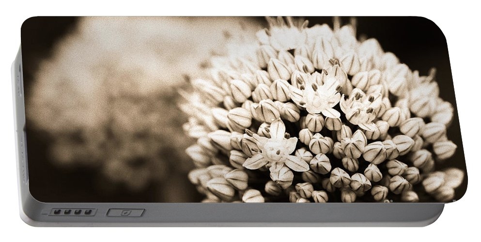 Onion Portable Battery Charger featuring the photograph Onion Flowers by Gaspar Avila