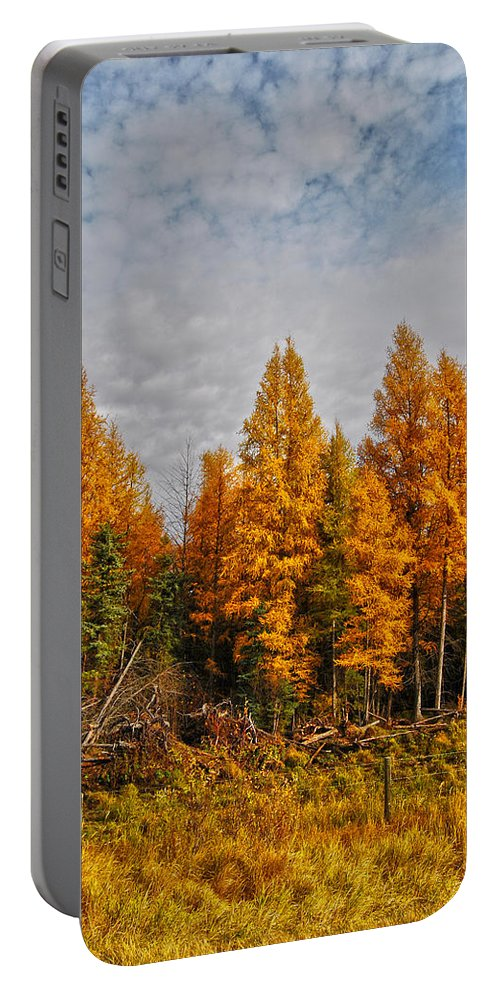 : Jerry Cordeiro Framed Prints Framed Prints Photographs Photographs Photographs Photographs Portable Battery Charger featuring the photograph Onoway by The Artist Project