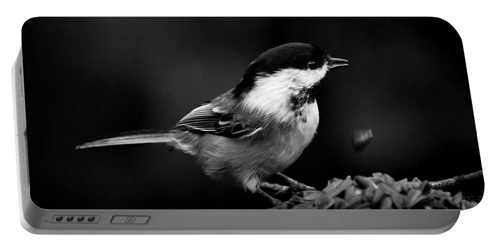 Chickadee Portable Battery Charger featuring the photograph Oops by Cheryl Baxter