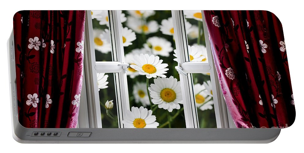 Flower Portable Battery Charger featuring the photograph Open Windows Onto Large Daisies by Simon Bratt Photography LRPS