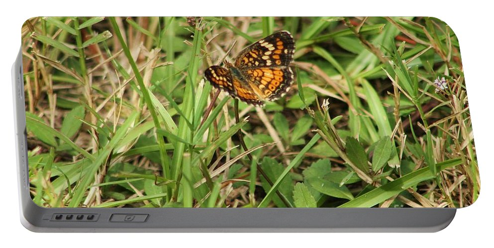 Butterfly Portable Battery Charger featuring the photograph Orange Butterfly by Michelle Powell