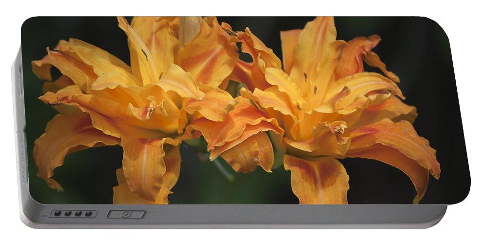 Daylily Portable Battery Charger featuring the photograph Orange Kwanso Daylily Pair by Teresa Mucha