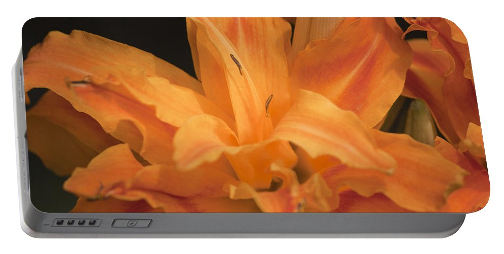 Daylily Portable Battery Charger featuring the photograph Orange Ruffles by Teresa Mucha