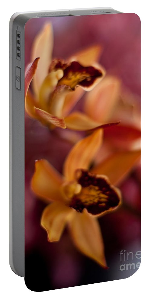 Tropical Portable Battery Charger featuring the photograph Orchid Dance by Mike Reid