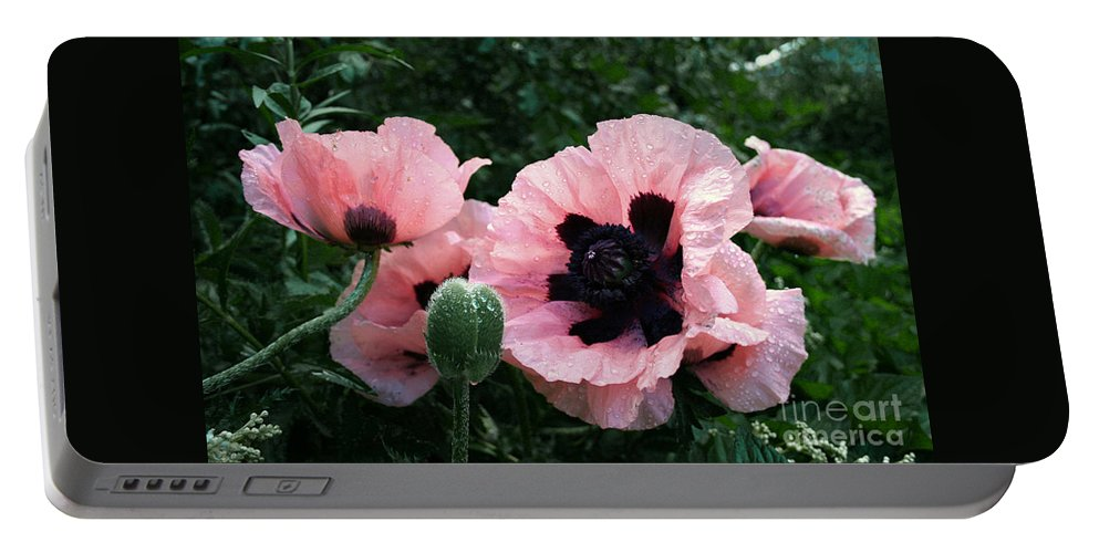 Flowers Portable Battery Charger featuring the photograph Oriental Poppies by Barbara McMahon