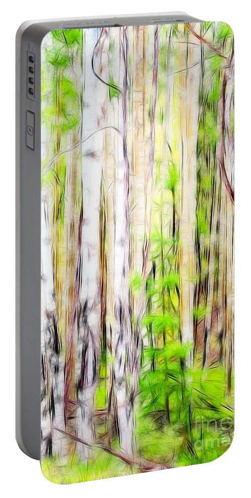 Fine Art Photography Portable Battery Charger featuring the photograph Out Of One Many Fractal by Donna Greene