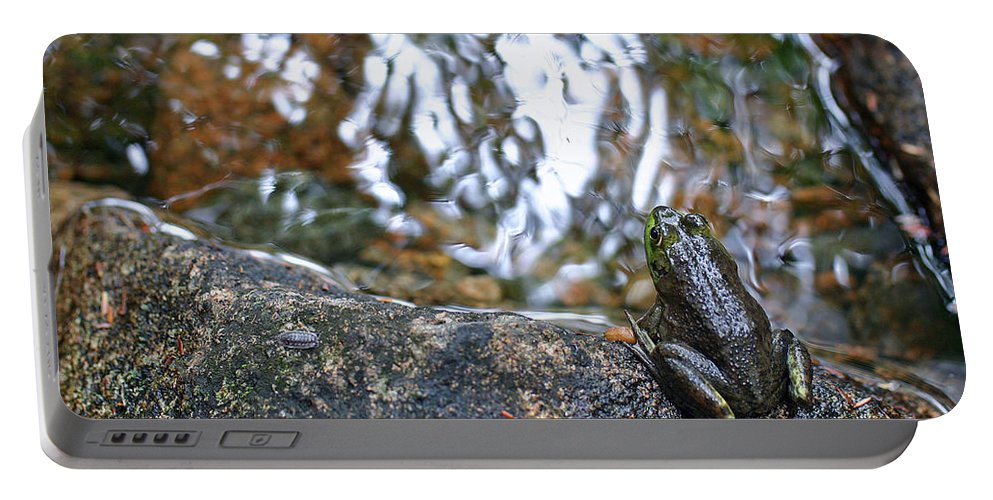 Frog Portable Battery Charger featuring the photograph Out Of Water by David Rucker