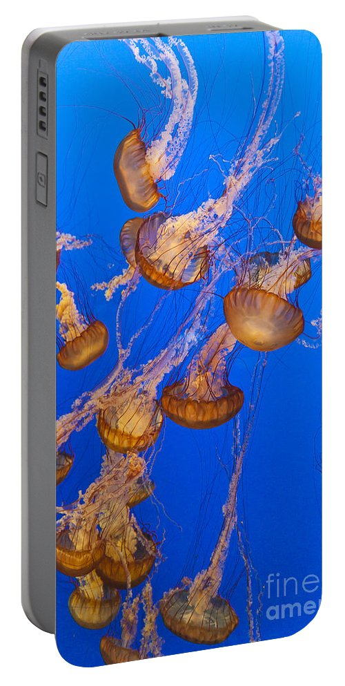 Aquarium Portable Battery Charger featuring the photograph Pack Of Jelly Fish by Darcy Michaelchuk
