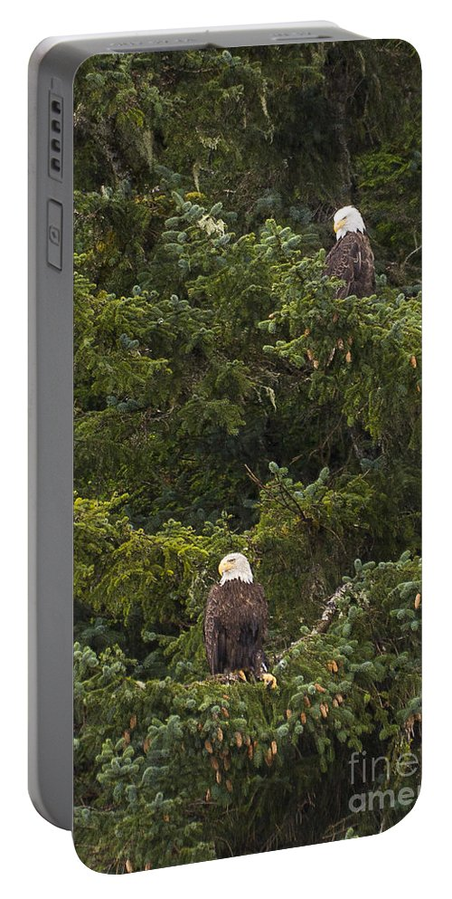 Alaska Portable Battery Charger featuring the photograph Pair Of Bald Eagles by Darcy Michaelchuk
