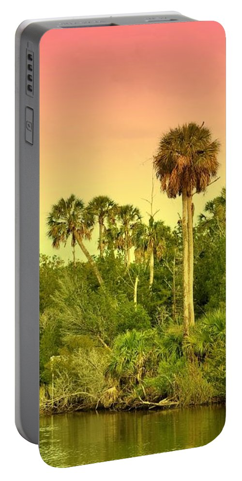 Landscapes Portable Battery Charger featuring the photograph Palms In Twilight by Jan Amiss Photography