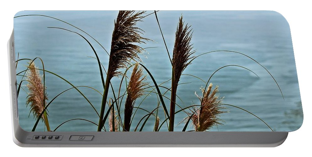 Big Sur Portable Battery Charger featuring the photograph Pampas Grass Of Big Sur by Eric Tressler