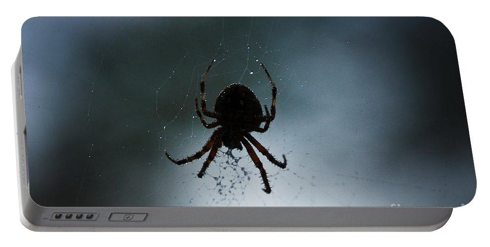 Spiders Portable Battery Charger featuring the photograph Pass The Towel by Kim Henderson