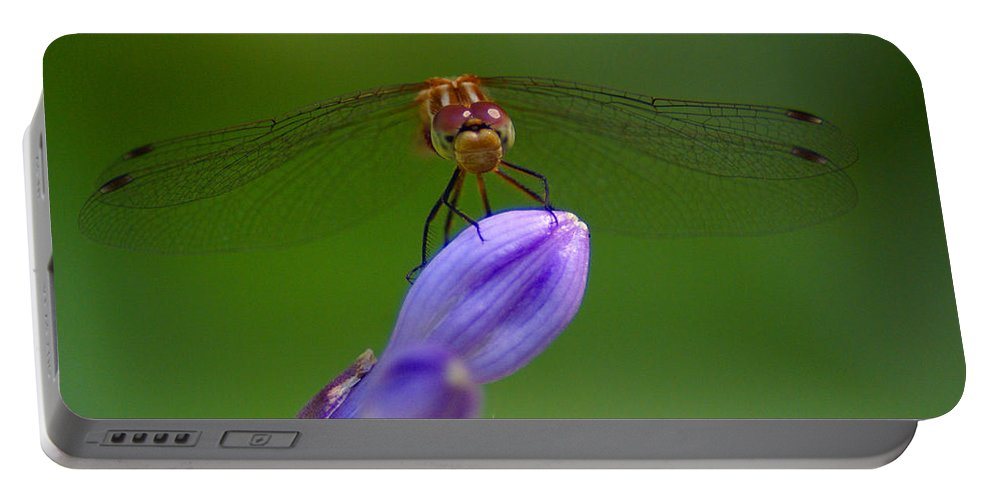 Dragonflies Portable Battery Charger featuring the photograph Peaceful Afternoon by Ben Upham III