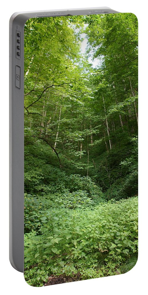 Forest Portable Battery Charger featuring the photograph Peaceful Forest by Megan Cohen