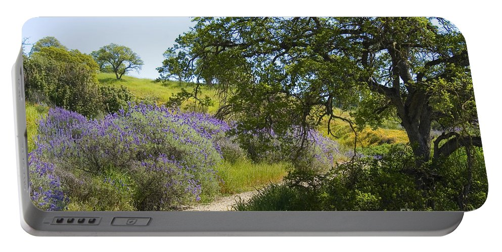 Knights Ferry Portable Battery Charger featuring the photograph Peaceful Path by Jim And Emily Bush