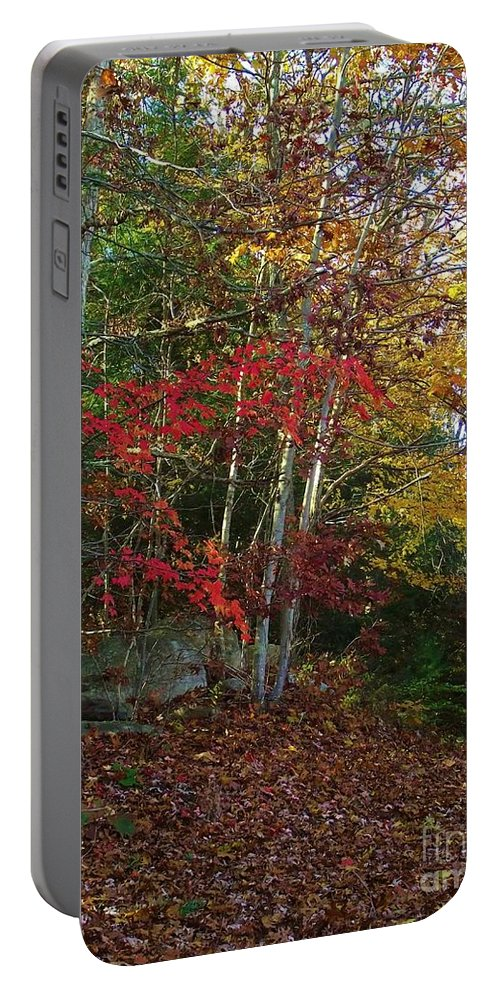 Landscape Portable Battery Charger featuring the photograph Peaceful Path by Michelle Welles