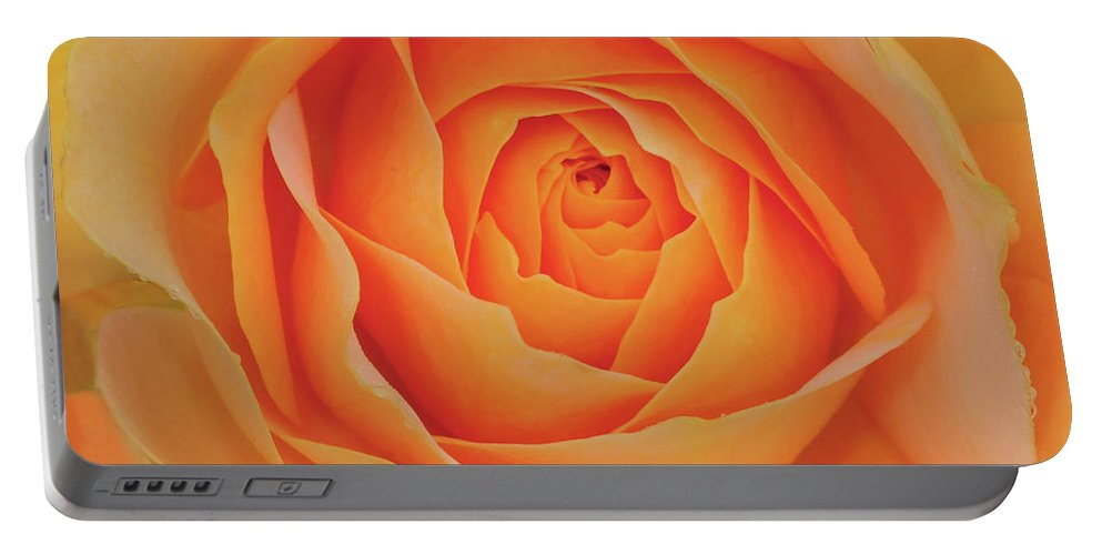 Rose Portable Battery Charger featuring the photograph Peach Rose by Dave Mills