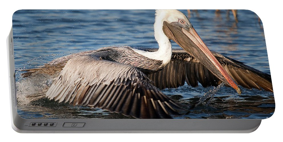 Pilican Portable Battery Charger featuring the photograph Pelican Take Off by TJ Baccari
