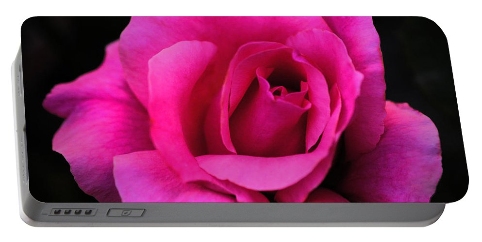 Clay Portable Battery Charger featuring the photograph Perfect Rose by Clayton Bruster