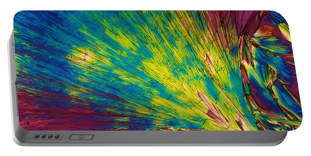 Polarized Light Micrograph Portable Battery Charger featuring the photograph Phenylalanine by Michael W. Davidson