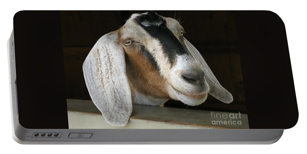 Goat Portable Battery Charger featuring the photograph Photogenic Goat by Ann Horn