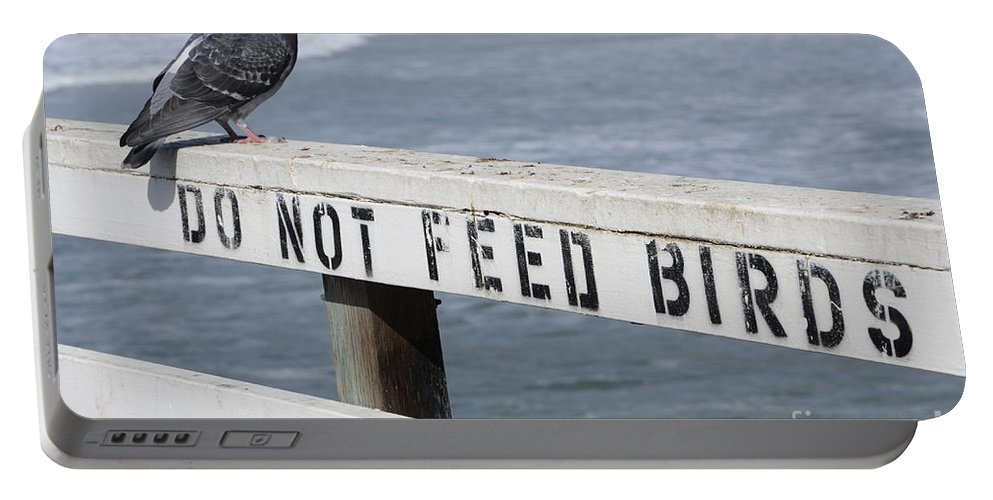 For The Fun Of It Portable Battery Charger featuring the photograph Pigeons Cannot Read by Bob Christopher