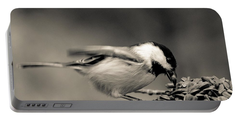 Chickadee Portable Battery Charger featuring the photograph Pigging Out by Cheryl Baxter