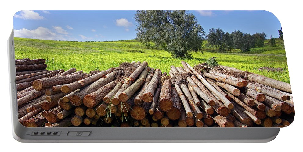 Autumn Portable Battery Charger featuring the photograph Pile Of Trunks by Carlos Caetano