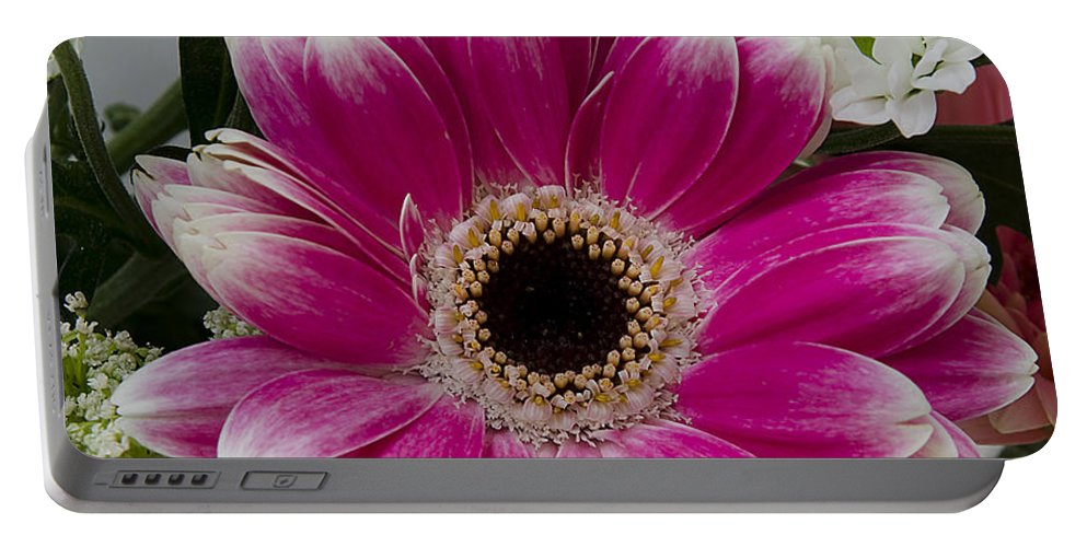 Floral Portable Battery Charger featuring the photograph Pink Gerbera by Jim And Emily Bush