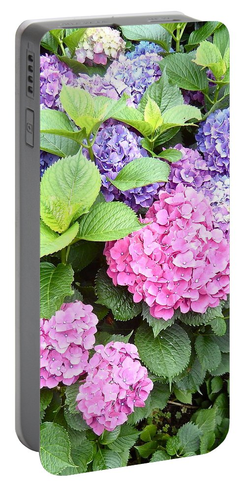 Pink Portable Battery Charger featuring the photograph Pink Purple Hydrangeas by Kume Bryant