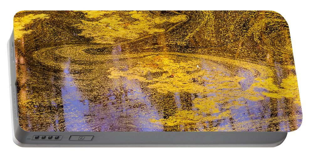 Pond Scum Portable Battery Charger featuring the photograph Pond Scum Two by Mike Penney