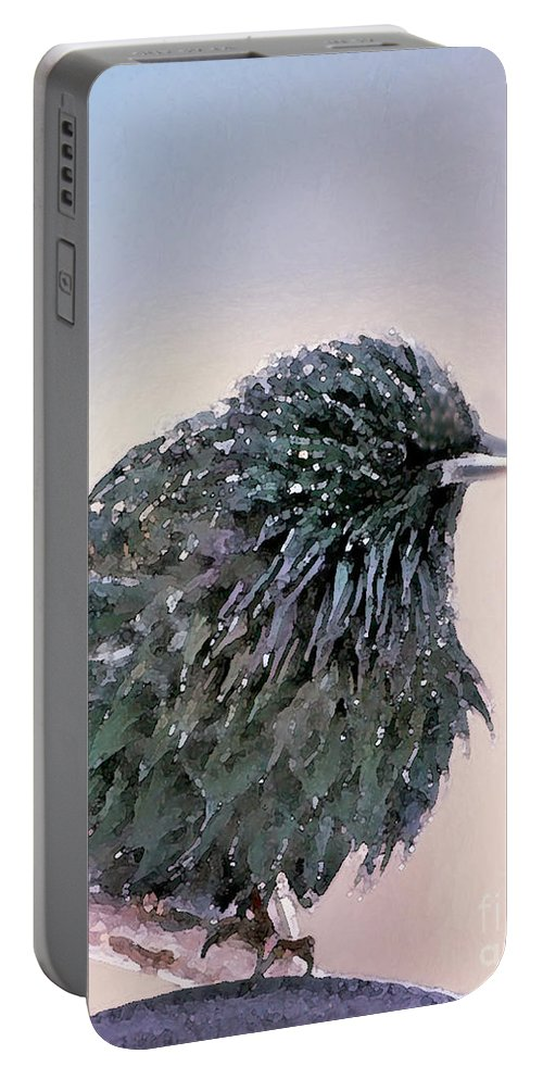 European Starling Portable Battery Charger featuring the photograph Poor Decision by Betty LaRue