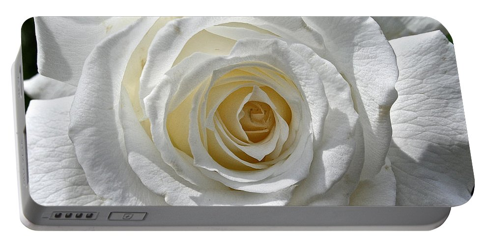 Outdoors Portable Battery Charger featuring the photograph Pope John II Rose by Susan Herber
