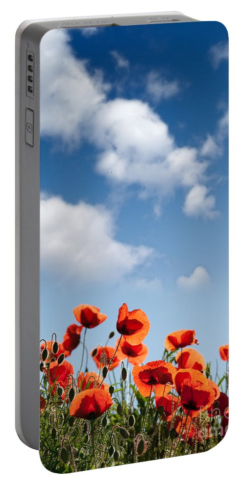 Poppy Portable Battery Charger featuring the photograph Poppy Flowers 04 by Nailia Schwarz